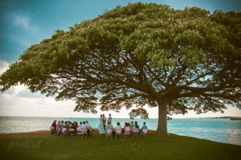 ceremony under the giant banyan tree